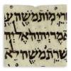 ebraico kropper